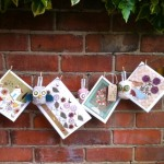 Helen Rhodes cards, prints, paintings and ceramics on the wall and in the greenhouse.