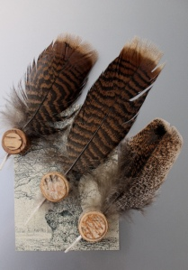 Magnets with feathers